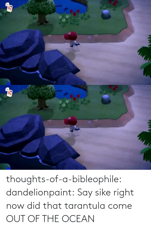 auto: thoughts-of-a-bibleophile:  dandelionpaint:  Say sike right now     did that tarantula come OUT OF THE OCEAN