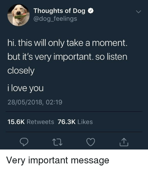 Love, I Love You, and Dog: Thoughts of Dog  @dog_feelings  hi. this will only take a moment.  but it's very important. so lister  closely  i love you  28/05/2018, 02:19  15.6K Retweets 76.3K Likes <p>Very important message</p>