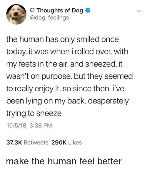 Today, Lying, and Back: Thoughts of Dog  @dog_feelings  the human has only smiled once  today. it was when i rolled over. with  my feets in the air. and sneezed. it  wasn't on purpose. but they seemed  to really enjoy it. so since then. i've  been lying on my back. desperately  trying to sneeze  10/5/18, 3:38 PM  37.3K Retweets 290K Likes make the human feel better
