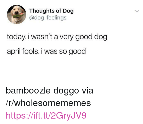 """Good, Today, and April Fools: Thoughts of Dog  @dog_feelings  today.i wasn't a very good dog  april fools. i was so good <p>bamboozle doggo via /r/wholesomememes <a href=""""https://ift.tt/2GryJV9"""">https://ift.tt/2GryJV9</a></p>"""