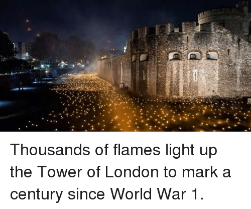 Memes, London, and World: Thousands of flames light up the Tower of London to mark a century since World War 1.