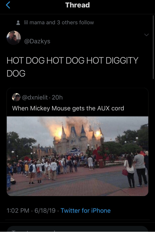 hot dog: Thread  lil mama and 3 others follow  @Dazkys  HOT DOG HOT DOG HOT DIGGITY  DOG  @dxnielit 20h  When Mickey Mouse gets the AUX cord  1:02 PM 6/18/19 Twitter for iPhone