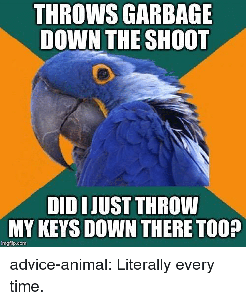 Advice, Tumblr, and Animal: THROWS GARBAGE  DOWN THE SHOOT  DID IJUST THROW  MY KEYS DOWN THERE TOO?  imgfip.com advice-animal:  Literally every time.