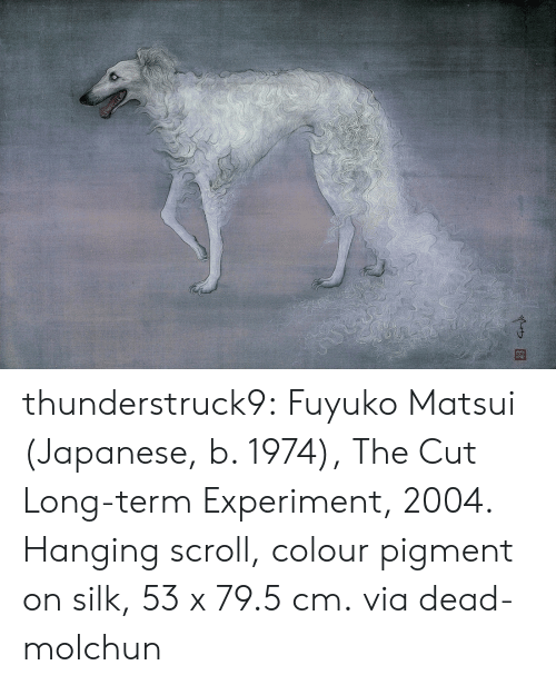Tumblr, Blog, and Http: thunderstruck9: Fuyuko Matsui (Japanese, b. 1974), The Cut Long-term Experiment, 2004. Hanging scroll, colour pigment on silk, 53 x 79.5 cm. via dead-molchun