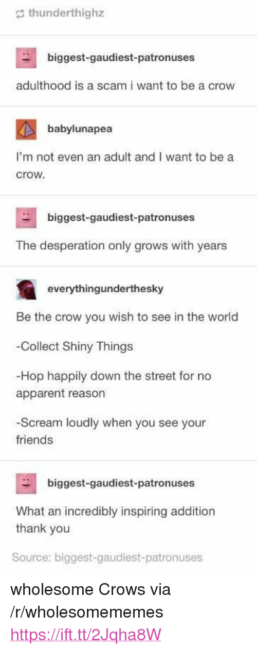 """Friends, Scream, and Thank You: thunderthighz  biggest-gaudiest-patronuses  adulthood is a scam i want to be a crow  babylunapea  I'm not even an adult and I want to be a  crow  biggest-gaudiest-patronuses  The desperation only grows with years  everythingunderthesky  Be the crow you wish to see in the world  Collect Shiny Things  -Hop happily down the street for no  apparent reason  -Scream loudly when you see your  friends  biggest-gaudiest-patronuses  What an incredibly inspiring addition  thank you  Source: biggest-gaudiest-patronuses <p>wholesome Crows via /r/wholesomememes <a href=""""https://ift.tt/2Jqha8W"""">https://ift.tt/2Jqha8W</a></p>"""
