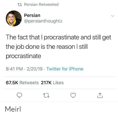 Iphone, Twitter, and Persian: ti Persian Retweeted  Persian  @persianthoughtz  The fact that I procrastinate and still get  the job done is the reason I still  procrastinate  8:41 PM. 2/20/19 Twitter for iPhone  67.5K Retweets 217K Likes Meirl
