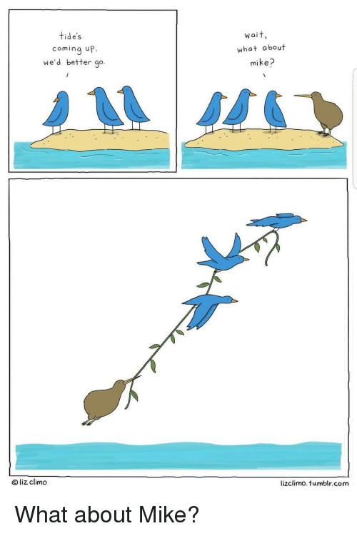 Lizclimo Tumblr: tide's  wait,  coming up.  we'd better go.  what about  mike?  O liz climo  lizclimo. tumblr.com <p>What about Mike?</p>