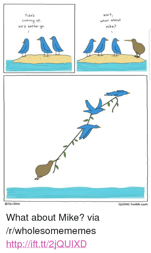 """Lizclimo Tumblr: tide's  wait,  coming up.  we'd better go.  what about  mike?  O liz climo  lizclimo. tumblr.com <p>What about Mike? via /r/wholesomememes <a href=""""http://ift.tt/2jQUIXD"""">http://ift.tt/2jQUIXD</a></p>"""