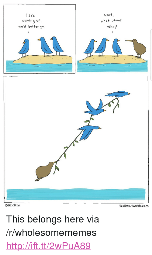 """Lizclimo Tumblr: tide's  wait,  coming up.  we'd better go  what about  mike?  O liz climo  lizclimo. tumblr.com <p>This belongs here via /r/wholesomememes <a href=""""http://ift.tt/2wPuA89"""">http://ift.tt/2wPuA89</a></p>"""
