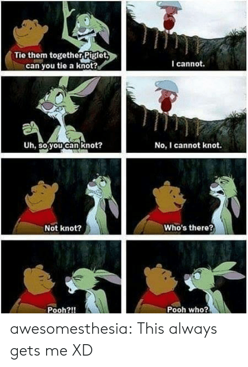 Knot: Tie them togetherPiglet  can you tie a knot?  I cannot.  Uh, so you can knot?  No, I cannot knot.  Who's there?  Not knot?  Pooh who?  Pooh?!! awesomesthesia:  This always gets me XD