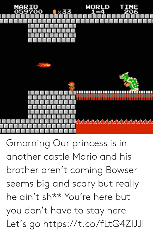 Ain: TIME  206  MARIO  059700  WORLD  _1-4  33 Gmorning  Our princess is in another castle Mario and his brother aren't coming Bowser seems big and scary but really he ain't sh** You're here but you don't have to stay here Let's go https://t.co/fLtQ4ZlJJl