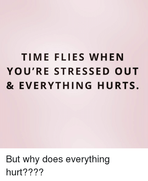 Time, Girl Memes, and Why: TIME FLIES WHEN  YOU'RE STRESSED OUT  & EVERYTHING HURTS. But why does everything hurt????