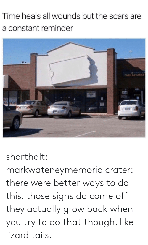 though: Time heals all wounds but the scars are  a constant reminder  SYRMT A  CASH ADVANCE  17.0 shorthalt: markwateneymemorialcrater:  there were better ways to do this. those signs do come off   they actually grow back when you try to do that though. like lizard tails.