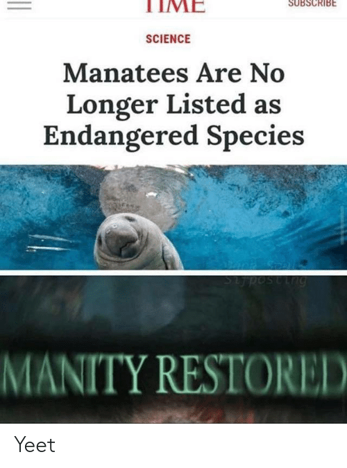 Science, Time, and Species: TIME  SUBSCRIBE  SCIENCE  Manatees Are No  Longer Listed as  Endangered Species  MANITY RESTORED Yeet
