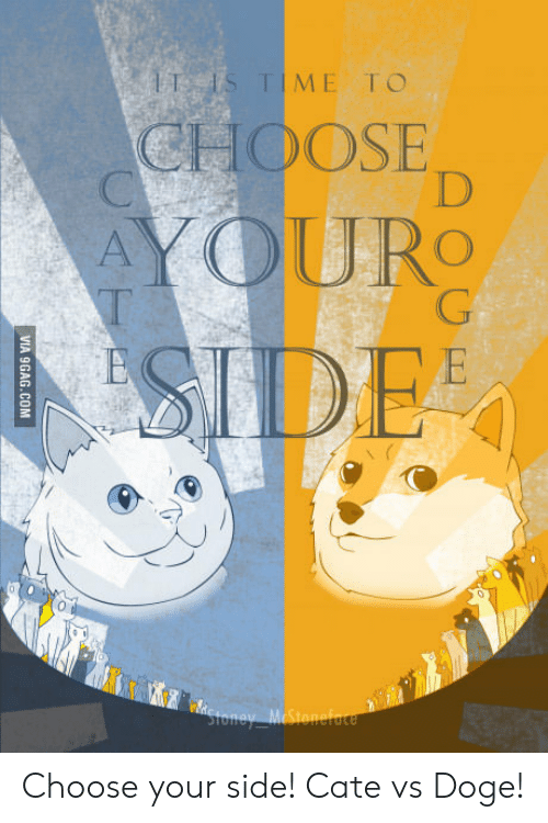 Choose Your Side: TIME T O  CHOOSE  RO Choose your side! Cate vs Doge!