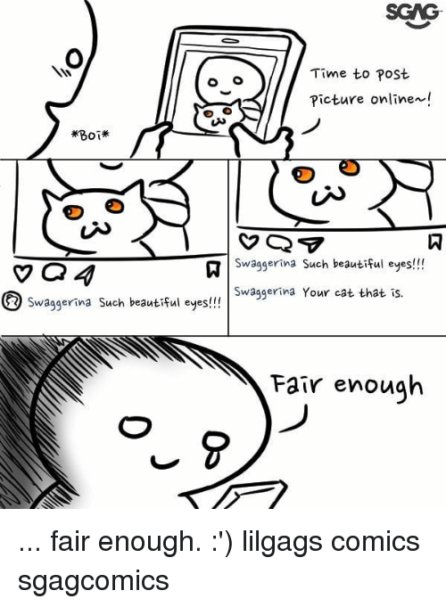 Beautiful, Memes, and Time: Time to post  Picture onlinex!  #80  Swaggerina Such beautiful eyes!!!  Swaggerina Your cat that is.  Swaggerina Such beautiful eyes!!  Fair enough ... fair enough. :') lilgags comics sgagcomics
