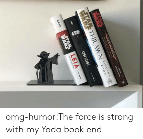 Force Is Strong: TIMOTHY  LEIA omg-humor:The force is strong with my Yoda book end