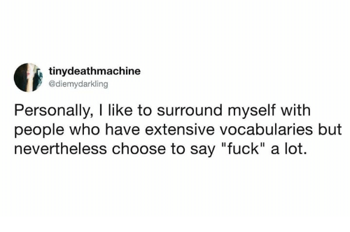 """Fuck, Humans of Tumblr, and Who: tinydeathmachine  @diemydarkling  Personally, I like to surround myself with  people who have extensive vocabularies but  nevertheless choose to say """"fuck"""" a lot."""