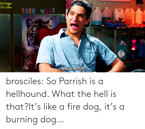 Burning Dog: TION  TEEN WLE  I would eat him. brosciles:  So Parrish is a hellhound. What the hell is that?It's like a fire dog, it's a burning dog…