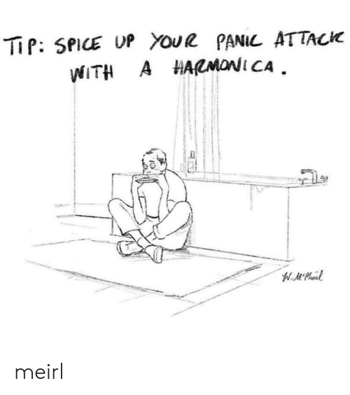 MeIRL, Spice, and Attack: TiP: SPICE UP YouR PANIL ATTACK  WITH A HARMONI CA meirl