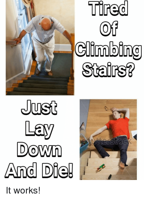 Climbing, Memes, and 🤖: Tired  of  Climbing  Stairs?  Just  Lay  Down  And Die! It works!