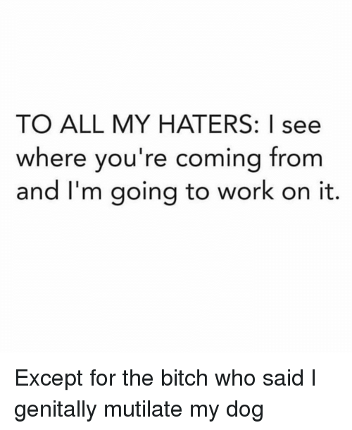 Bitch, Work, and Girl Memes: TO ALL MY HATERS: I see  where you're coming from  and I'm going to work on it. Except for the bitch who said I genitally mutilate my dog