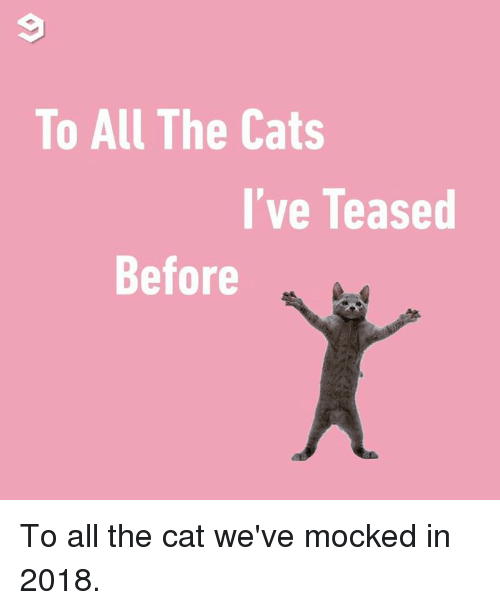 Cats, Dank, and All The: To All The Cats  I've Teased  Before To all the cat we've mocked in 2018.