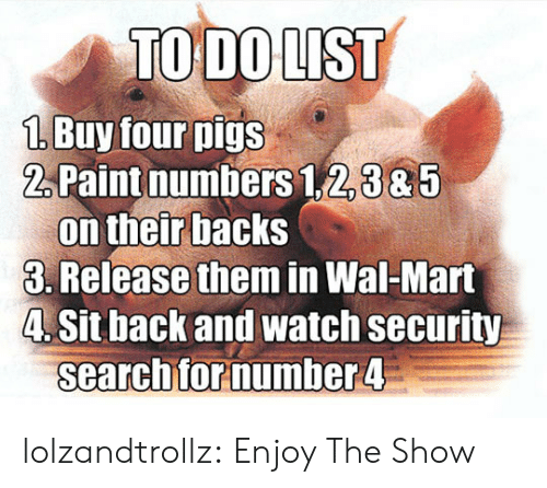 Tumblr, Wal Mart, and Blog: TO DO LIST  1 Buy four pigs  2Paint numbers 1,2,385  on their backs  3. Release them in Wal-Mart  4. Sit back and watch security  searchfor number 4 lolzandtrollz:  Enjoy The Show