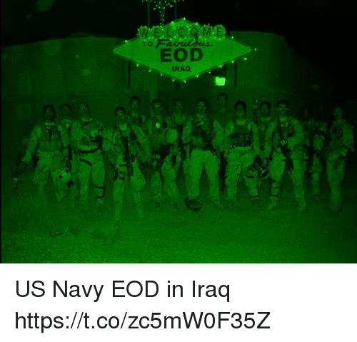 Memes, Iraq, and Navy: TO  EOD  IRAQ US Navy EOD in Iraq https://t.co/zc5mW0F35Z
