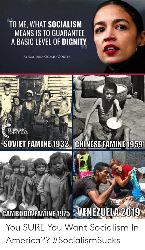 America, Memes, and Socialism: TO ME, WHAT SOCIALISM  MEANS IS TO GUARANTEE  A BASIC LEVEL OF DIGNITY  ALEXANDRIA OCASIO-CORTEZ  SOVIET FAMINE 1932 CHINESEFAMINE 1959  CAMBODIA FAMINE 1975 2 You SURE You Want Socialism In America?? #SocialismSucks