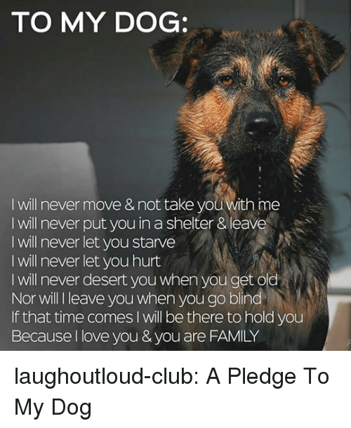 Club, Family, and Love: TO MY DOG:  I will never move & not take you with ime  I will never put you in a shelter & leave  I will never let you starve  I will never let you hurt  I will never desert you when you get old  Nor will l leave you when you go blind  If that time comes I will be there to hold you  Because I love you & you are FAMILY laughoutloud-club:  A Pledge To My Dog