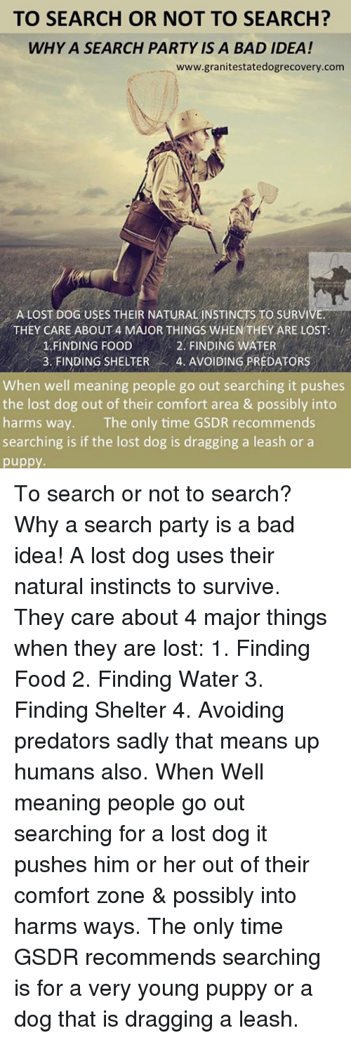Bad, Food, and Memes: TO SEARCH OR NOT TO SEARCH?  WHY A SEARCH PARTY IS A BAD IDEA!  www.granitestatedogrecovery.com  A LOST DOG USES THEIR NATURAL INSTINCTS TO SURVI  THEY CARE ABOUT 4 MAJOR THINGS WHEN THEY ARE LOST  1 FINDING FOOD  3. FINDING SHELTER 4. AVOIDING PREDATORS  2. FINDING WATER  When well meaning people go out searching it pushes  the lost dog out of their comfort area & possibly into  harms way. The only time GSDR recommends  searching is if the lost dog is dragging a leash or a  puppy. To search or not to search? Why a search party is a bad idea! A lost dog uses their natural instincts to survive. They care about 4 major things when they are lost: 1. Finding Food 2. Finding Water 3. Finding Shelter 4. Avoiding predators sadly that means up humans also.   When Well meaning people go out searching for a lost dog it pushes him or her out of their comfort zone & possibly into harms ways. The only time GSDR recommends searching is for a very young puppy or a dog that is dragging a leash.