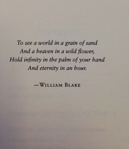 Eternity: To see a world in a grain of sand  And a heaven in a wild flower,  Hold infinity in the palm of your hand  And eternity in an hour.  -WILLIAM BLAKE