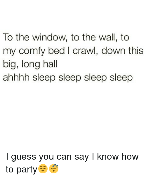 Funny, Party, and Guess: To the window, to the wall, to  my comfy bed I crawl, down this  big, long hall  ahhhh sleep sleep sleep sleep I guess you can say I know how to party😌😴