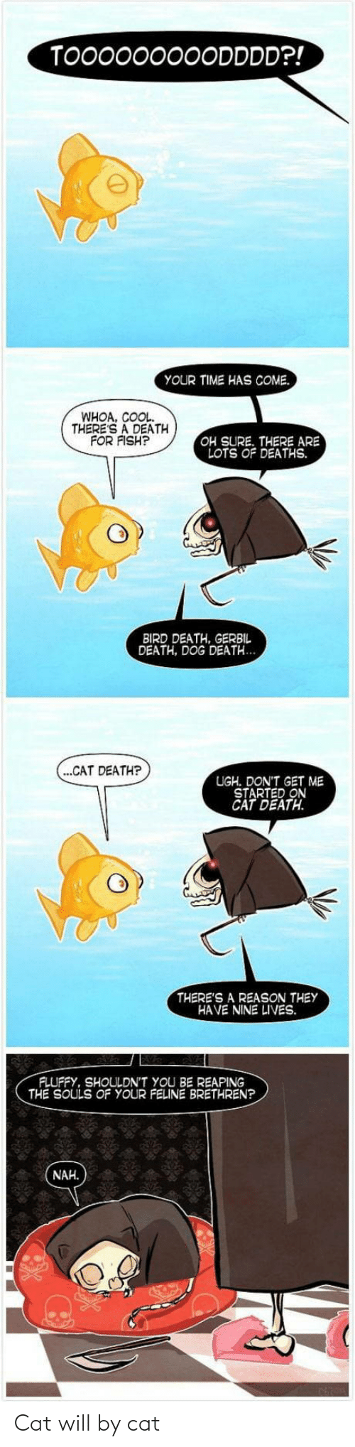 Fish: TO00000000DDDD?!  YOUR TIME HAS COME.  WHOA, COOL.  THERE'S A DEATH  FOR FISH?  OH SURE. THERE ARE  LOTS OF DEATHS.  BIRD DEATH, GERBIL  DEATH, DOG DEATH...  (...CAT DEATH?  UGH. DON'T GET ME  STARTED ON  CAT DEATH.  THERE'S A REASON THEY  HAVE NINE LIVES.  FLUFFY, SHOULDN'T YOU BE REAPING  THE SOULS OF YOUR FELINE BRETHREN?  NAH. Cat will by cat