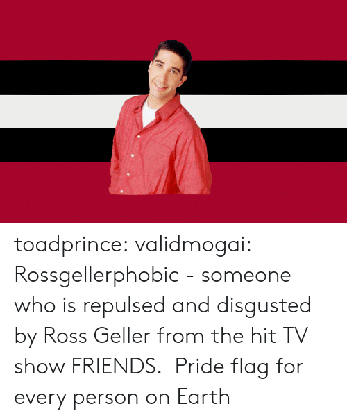 Disgusted: toadprince: validmogai: Rossgellerphobic - someone who is repulsed and disgusted by Ross Geller from the hit TV show FRIENDS.   Pride flag for every person on Earth