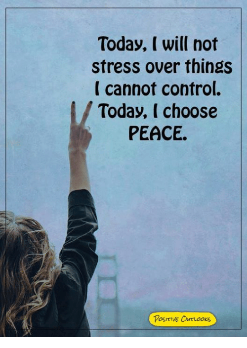 Memes, Control, and Today: Today, I will not  stress over things  I cannot control.  Today, I choose  PEACE  Posiive Ourooks