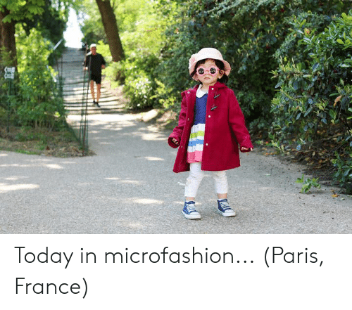 Dank, France, and Paris: Today in microfashion...  (Paris, France)