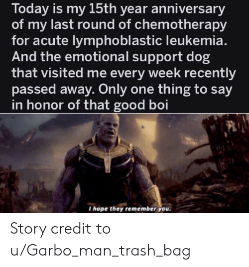 Trash, Good, and Leukemia: Today is my 15th year anniversary  of my last round of chemotherapy  for acute lymphoblastic leukemia.  And the emotional support dog  that visited me every week recently  passed away. Only one thing to say  in honor of that good boi  I hope they remember you Story credit to u/Garbo_man_trash_bag