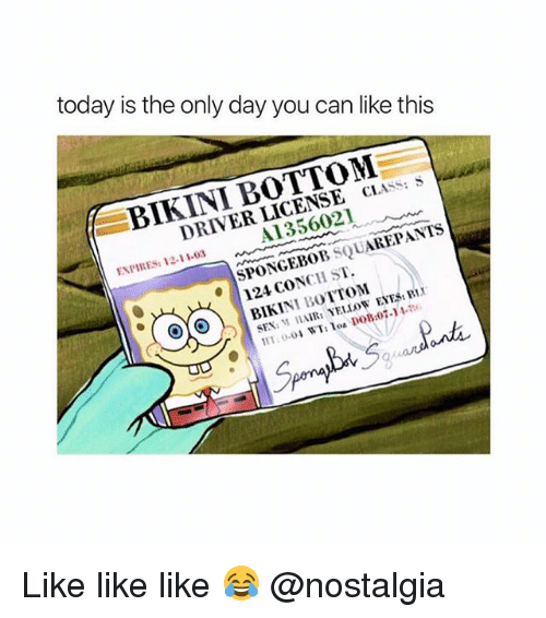 Ass, Memes, and Nostalgia: today is the only day you can like this  BIKINI BOTTOM  DRIVER LICENSE CL  ASS: S  A1356021  ENPIRES: 12-11-03  SPONGEBOB SQUAREPANTS  124  124 CONCH ST  SEX: M HAIR:YELLOW EYES: B Like like like 😂 @nostalgia