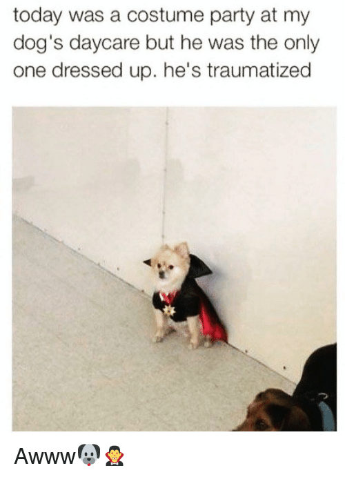 Traumatized: today was a costume party at my  dog's daycare but he was the only  one dressed up. he's traumatized Awww🐶🧛‍♂️