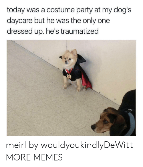 Dank, Dogs, and Memes: today was a costume party at my dog's  daycare but he was the only one  dressed up. he's traumatized meirl by wouldyoukindlyDeWitt MORE MEMES