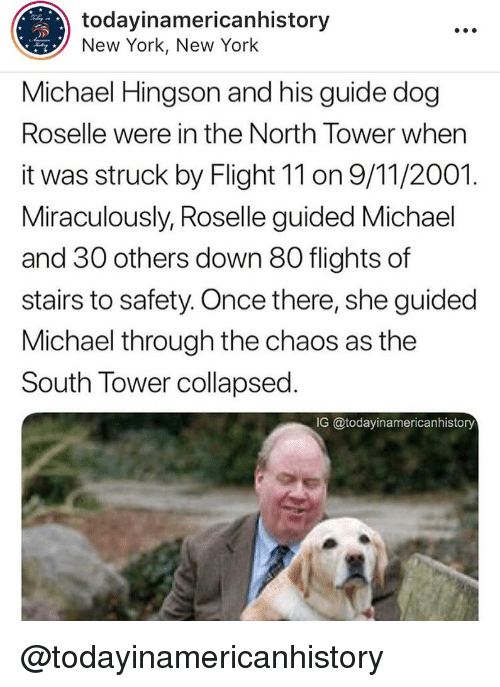9/11, Memes, and New York: todayinamericanhistory  New York, New York  Michael Hingson and his guide dog  Roselle were in the North Tower when  it was struck by Flight 11 on 9/11/2001.  Miraculously, Roselle guided Michael  and 30 others down 80 flights of  stairs to safety. Once there, she guided  Michael through the chaos as the  South Tower collapsed  IG @todayinamericanhistory @todayinamericanhistory