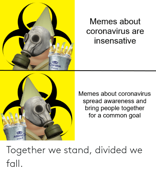 Divided: Together we stand, divided we fall.