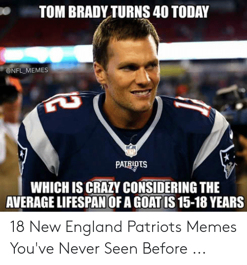 England Patriots Memes: TOM BRADY TURNS 40 TODAY  NFL MEMES  WHICH IS CRAZY CONSIDERING THE  AVERAGE LIFESPAN OF A GOATIS 15-18 YEARS 18 New England Patriots Memes You've Never Seen Before ...