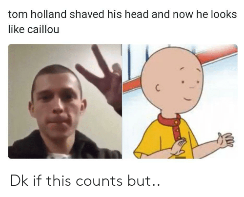 Caillou, Head, and Holland: tom holland shaved his head and now he looks  like caillou Dk if this counts but..