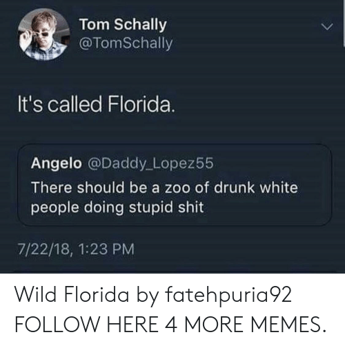 Drunking: Tom Schally  @TomSchally  It's called Florida.  Angelo @Daddy Lopez55  There should be a zoo of drunk white  people doing stupid shit  7/22/18, 1:23 PM Wild Florida by fatehpuria92 FOLLOW HERE 4 MORE MEMES.
