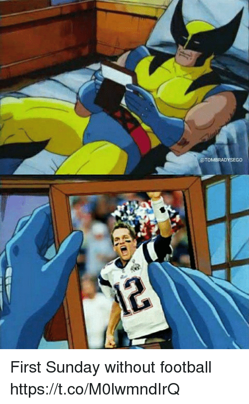 Football, Memes, and Sunday: @TOMBRADYSEGO First Sunday without football https://t.co/M0lwmndIrQ