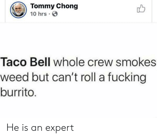 Taco Bell: Tommy Chong  10 hrs  Taco Bell whole crew smokes  weed but can't roll a fucking  burrito. He is an expert
