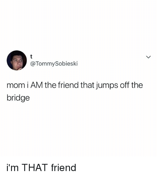 Relatable, Mom, and The Bridge: @TommySobieski  mom i AM the friend that jumps off the  bridge i'm THAT friend